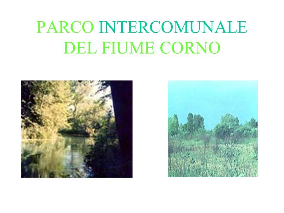 PARCO INTERCOMUNALE DEL FIUME CORNO