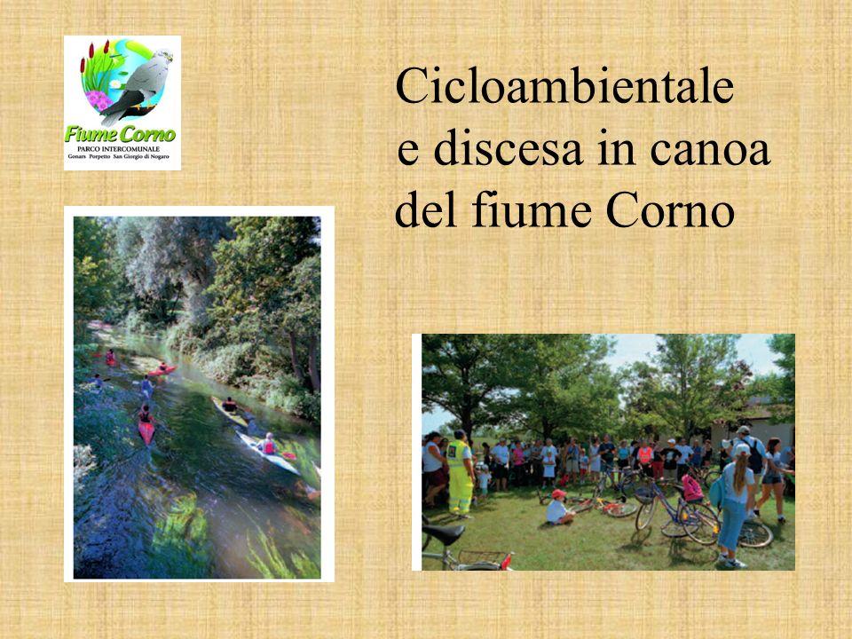 Cicloambientale e discesa in canoa del fiume Corno