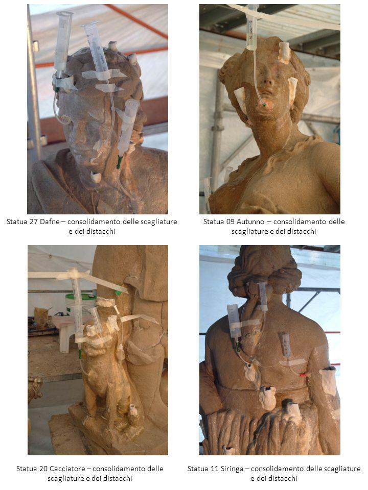 Statua 27 Dafne – consolidamento delle scagliature e dei distacchi