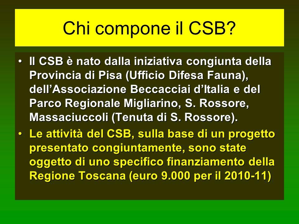Chi compone il CSB