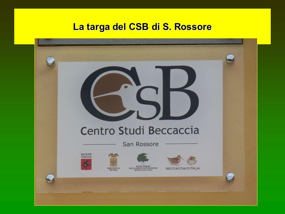 La targa del CSB di S. Rossore