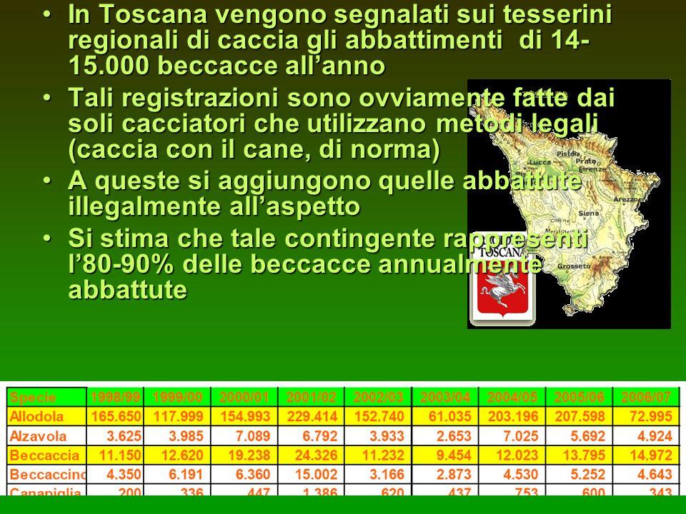 In Toscana vengono segnalati sui tesserini regionali di caccia gli abbattimenti di 14-15.000 beccacce all'anno