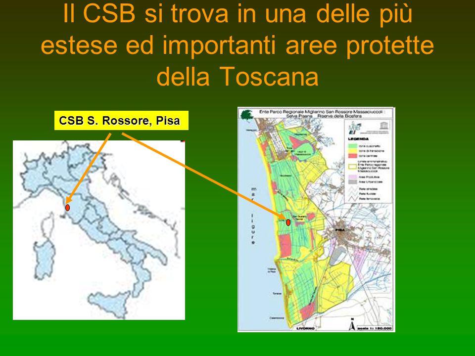 Il CSB si trova in una delle più estese ed importanti aree protette della Toscana