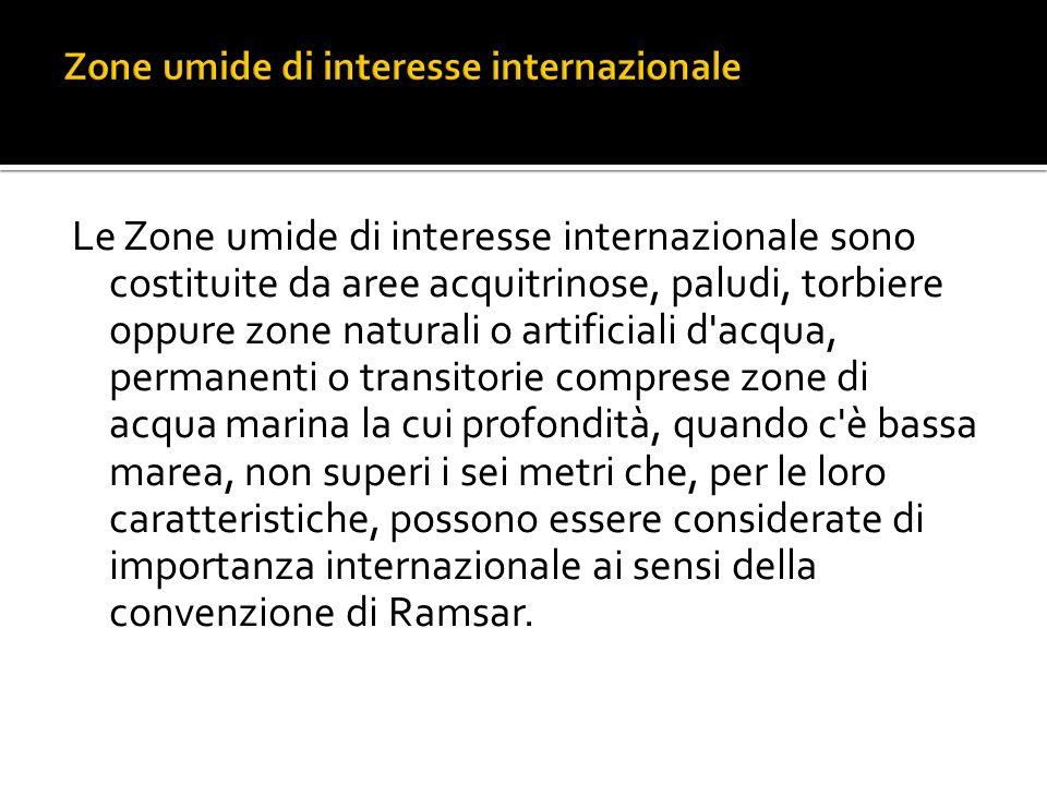 Zone umide di interesse internazionale