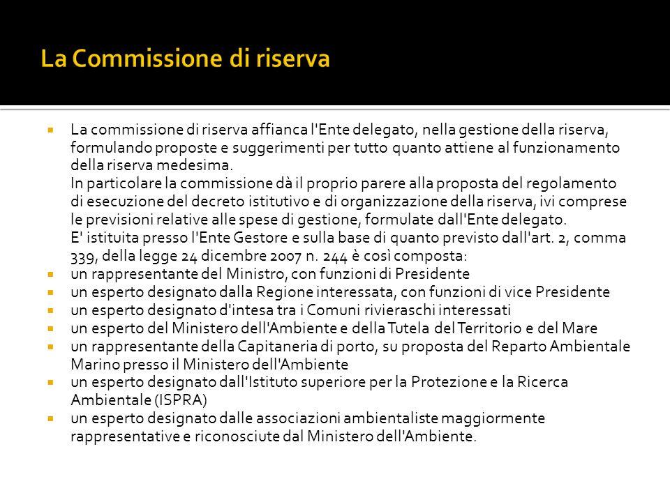 La Commissione di riserva