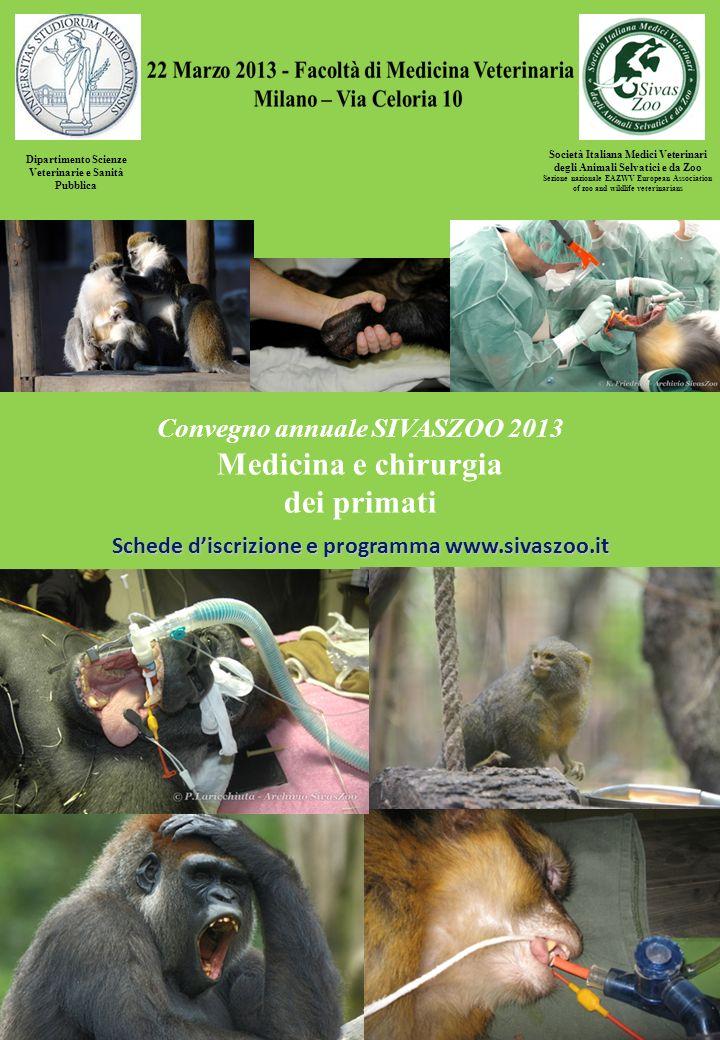 Medicina e chirurgia dei primati