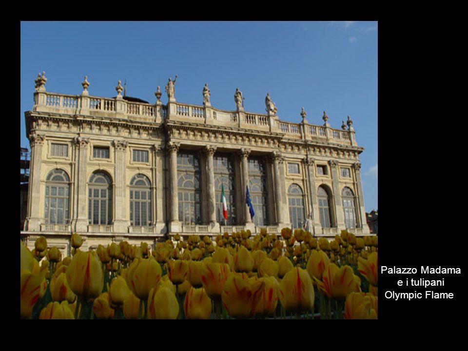 Palazzo Madama e i tulipani Olympic Flame