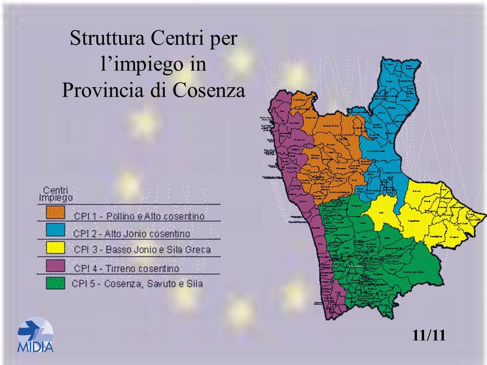 Struttura Centri per l'impiego in Provincia di Cosenza