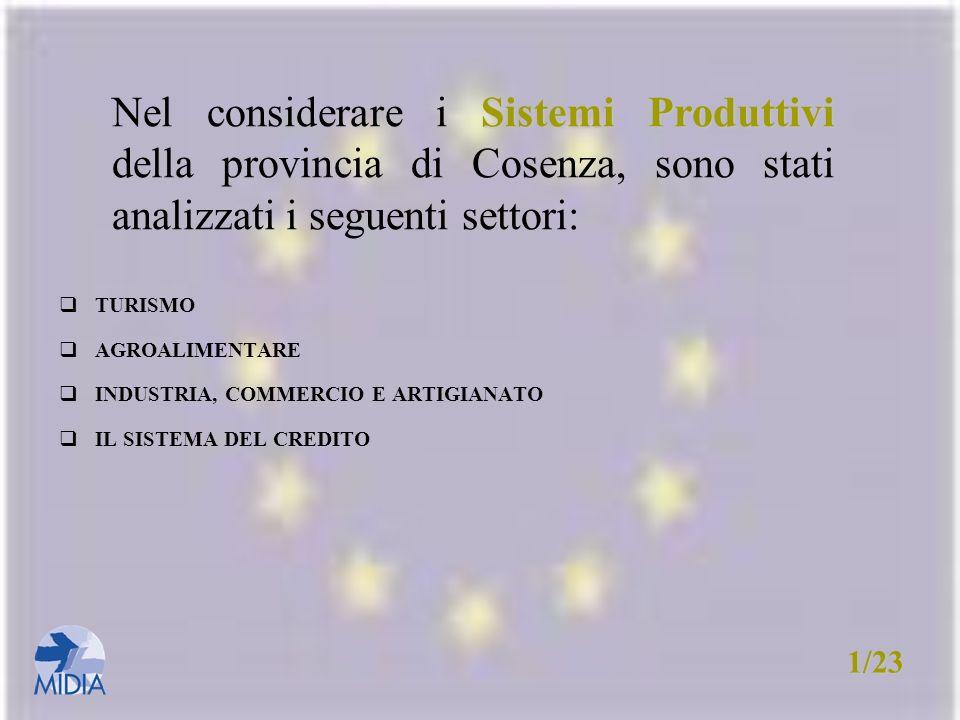 Nel considerare i Sistemi Produttivi della provincia di Cosenza, sono stati analizzati i seguenti settori: