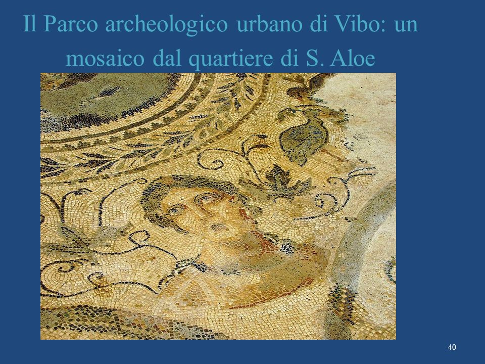 Il Parco archeologico urbano di Vibo: un mosaico dal quartiere di S