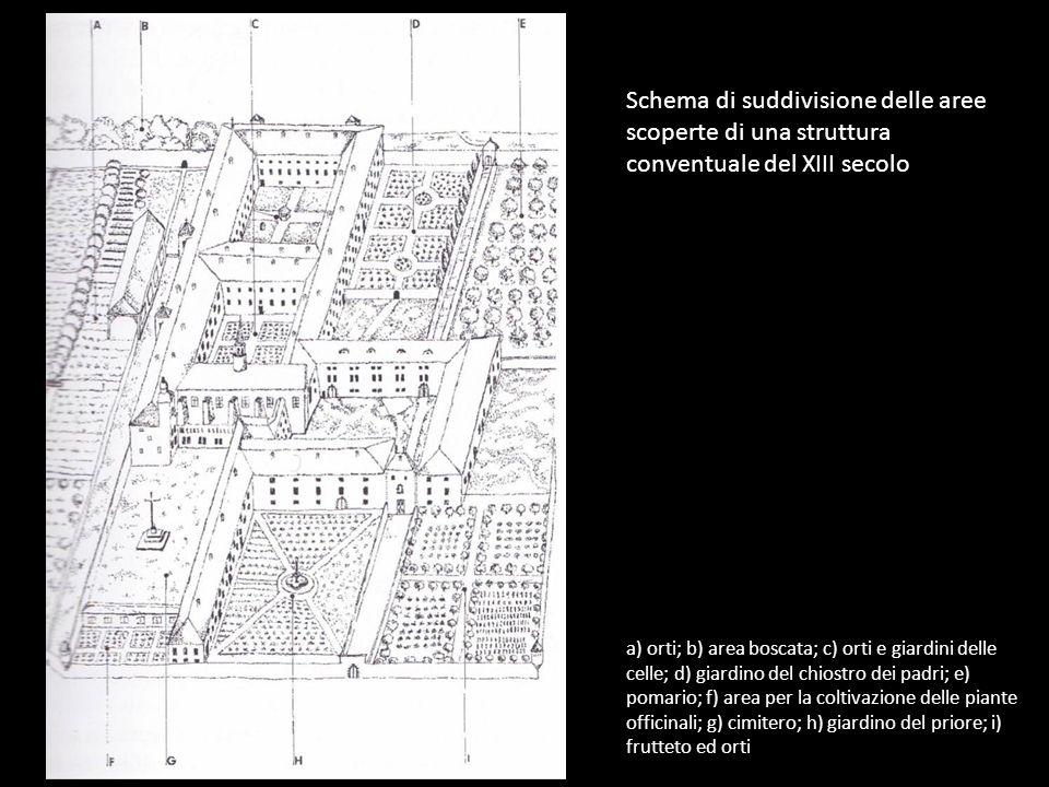 Schema di suddivisione delle aree scoperte di una struttura conventuale del XIII secolo
