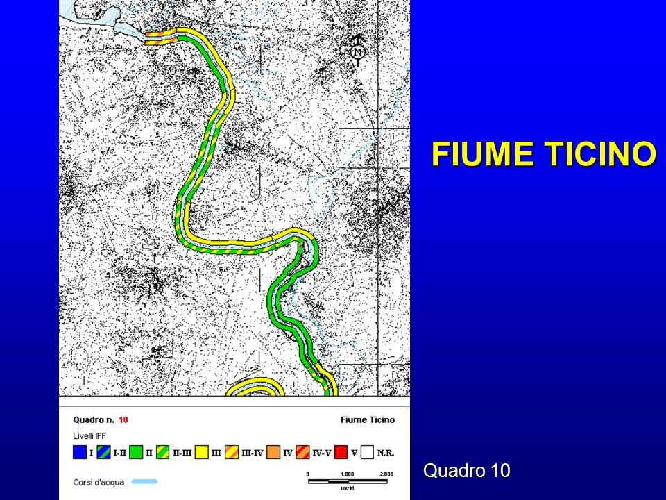 FIUME TICINO Quadro 10