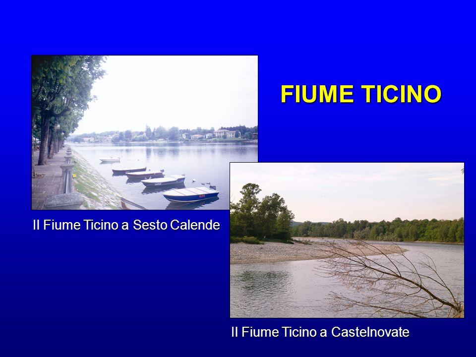 FIUME TICINO Il Fiume Ticino a Sesto Calende