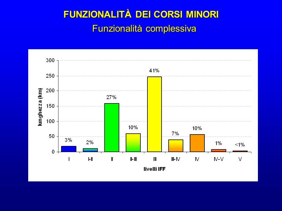 FUNZIONALITÀ DEI CORSI MINORI
