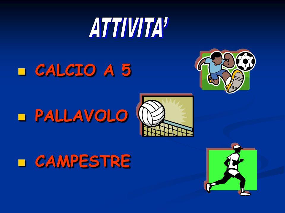 ATTIVITA' CALCIO A 5 PALLAVOLO CAMPESTRE