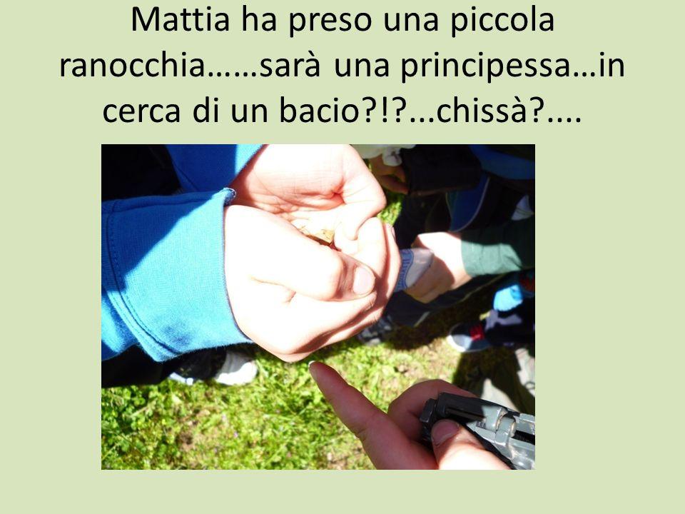 Mattia ha preso una piccola ranocchia……sarà una principessa…in cerca di un bacio ! ...chissà ....