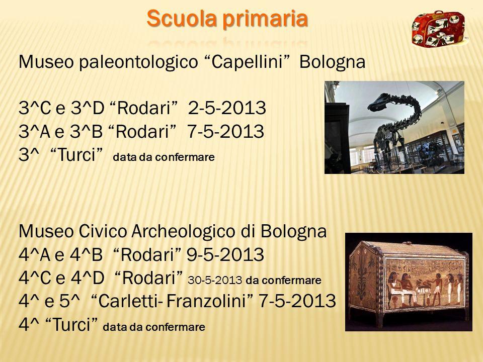 Scuola primaria Museo paleontologico Capellini Bologna