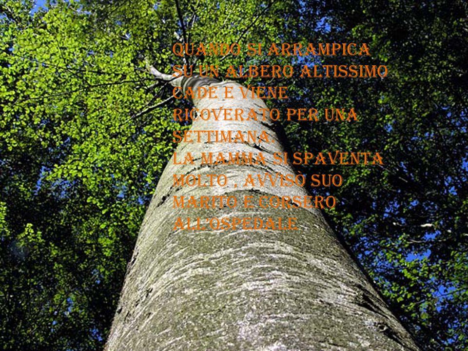 Quando si arrampica su un albero altissimo cade e viene ricoverato per una settimana.