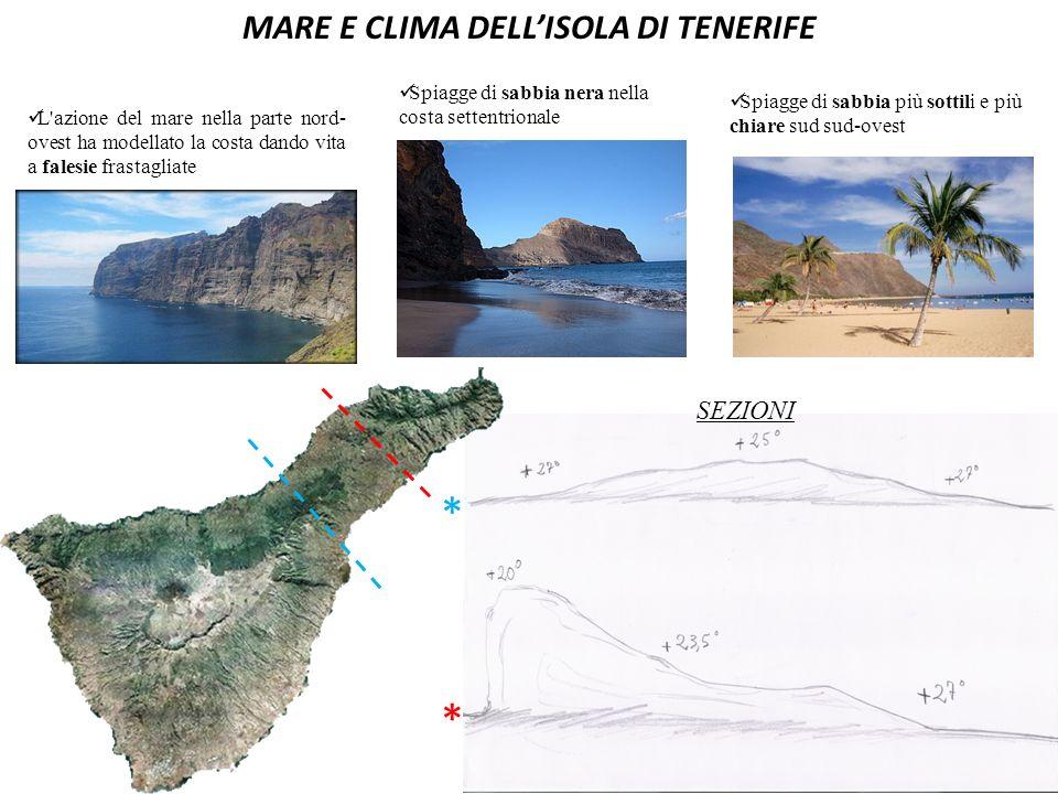 MARE E CLIMA DELL'ISOLA DI TENERIFE