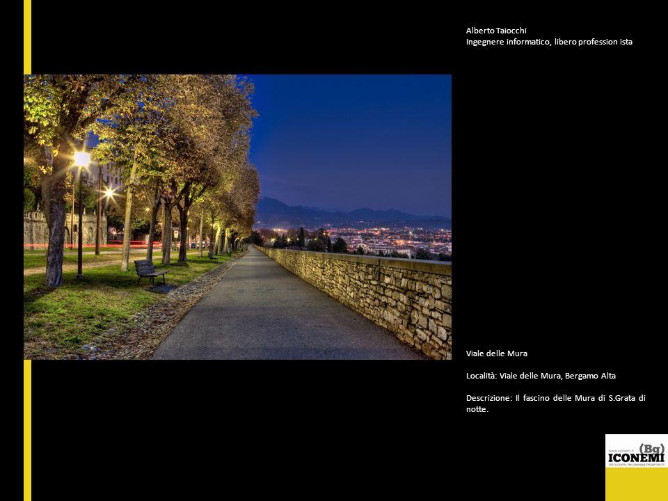Alberto Taiocchi Ingegnere informatico, libero profession ista. Viale delle Mura. Località: Viale delle Mura, Bergamo Alta.