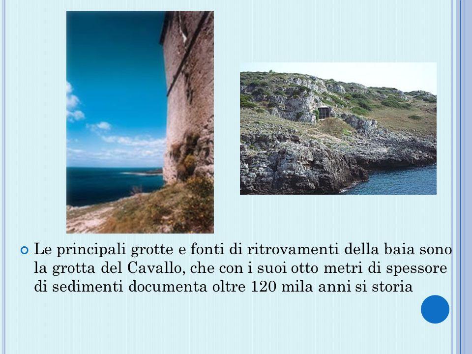 Le principali grotte e fonti di ritrovamenti della baia sono la grotta del Cavallo, che con i suoi otto metri di spessore di sedimenti documenta oltre 120 mila anni si storia
