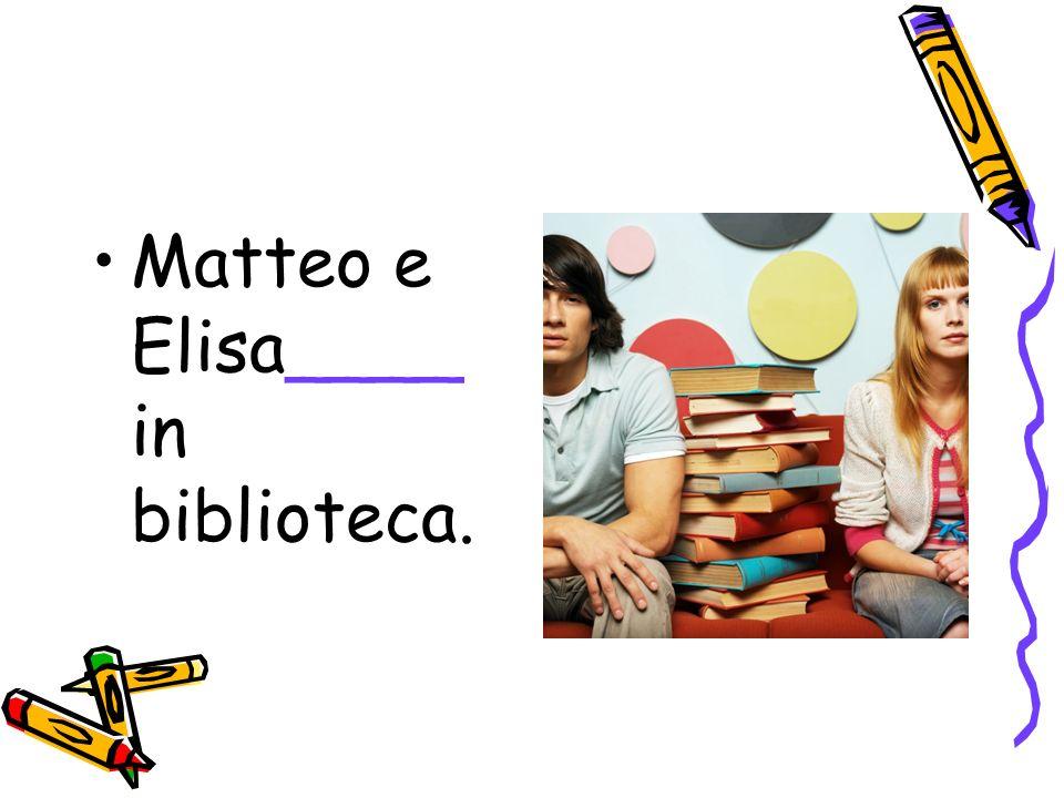 Matteo e Elisa____ in biblioteca.