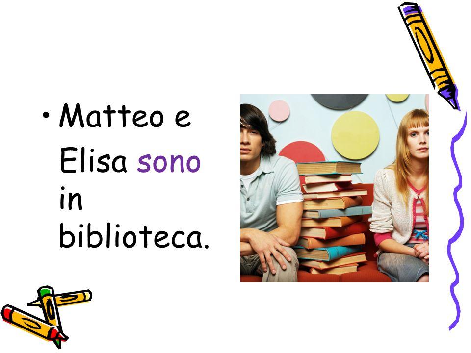 Matteo e Elisa sono in biblioteca.
