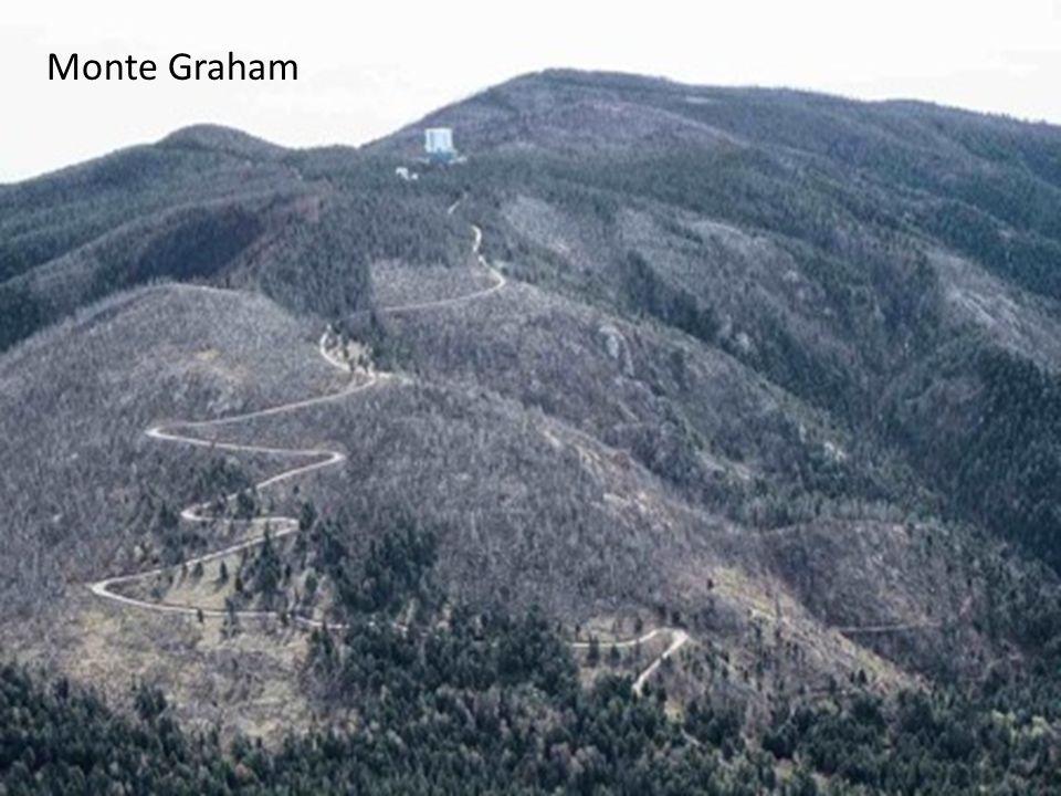 Monte Graham