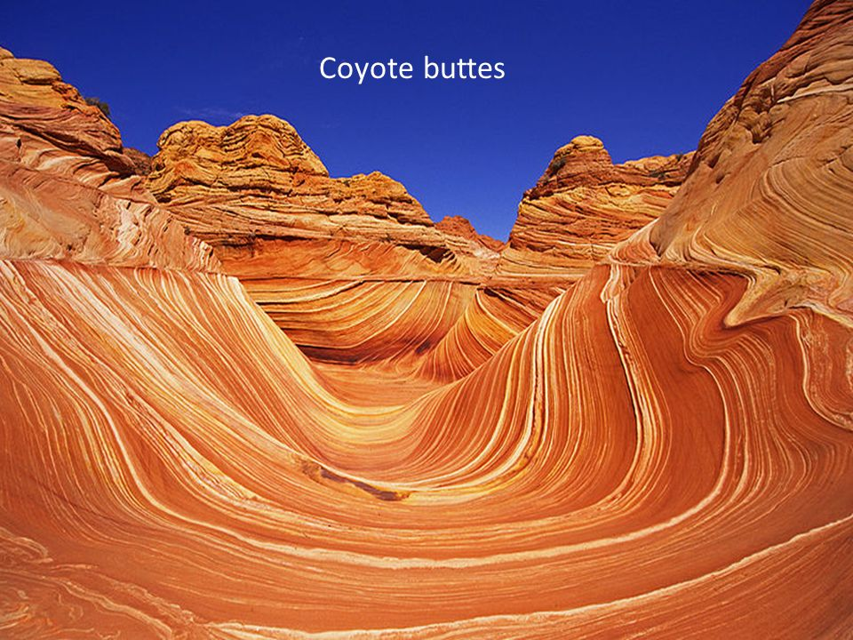 Coyote buttes Arenaria colorata ed erosa dal vento