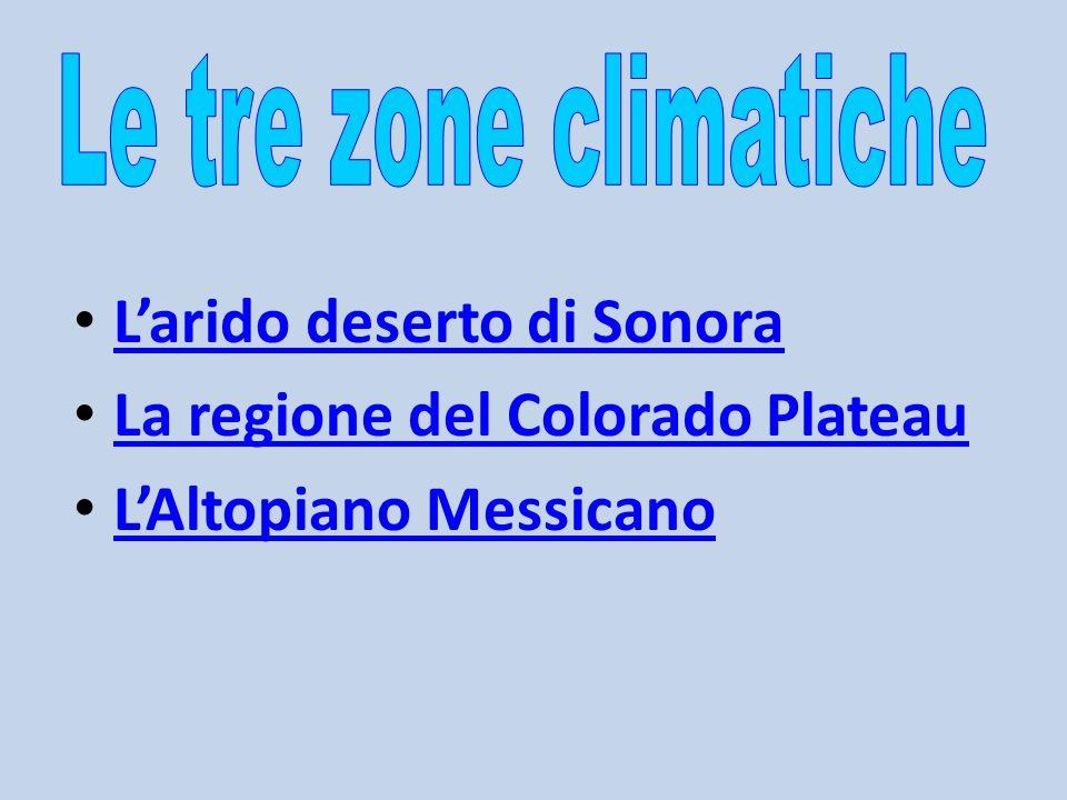 L'arido deserto di Sonora La regione del Colorado Plateau