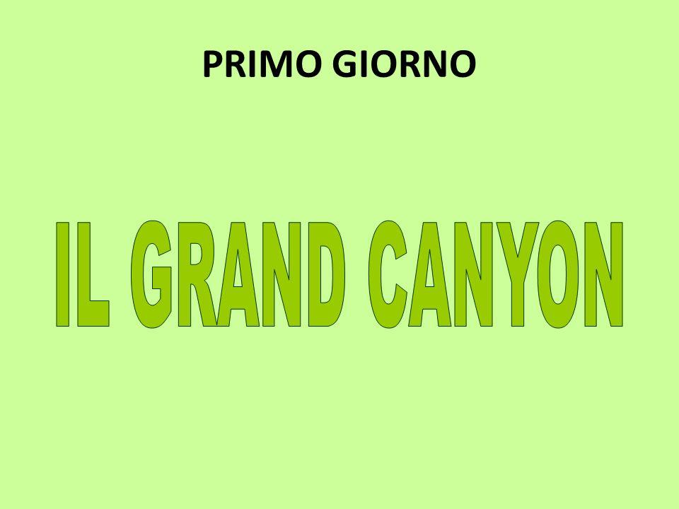 PRIMO GIORNO IL GRAND CANYON