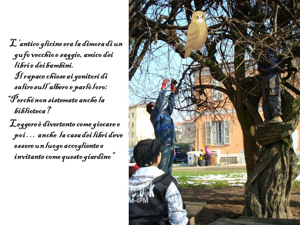 L'antico glicine era la dimora di un gufo vecchio e saggio, amico dei libri e dei bambini. Il rapace chiese ai genitori di salire sull'albero e parlò loro: