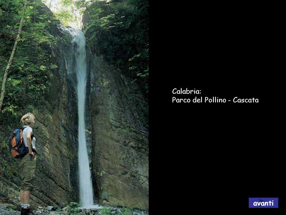 Calabria: Parco del Pollino - Cascata avanti