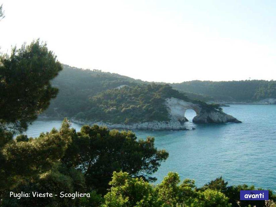 Puglia: Vieste - Scogliera