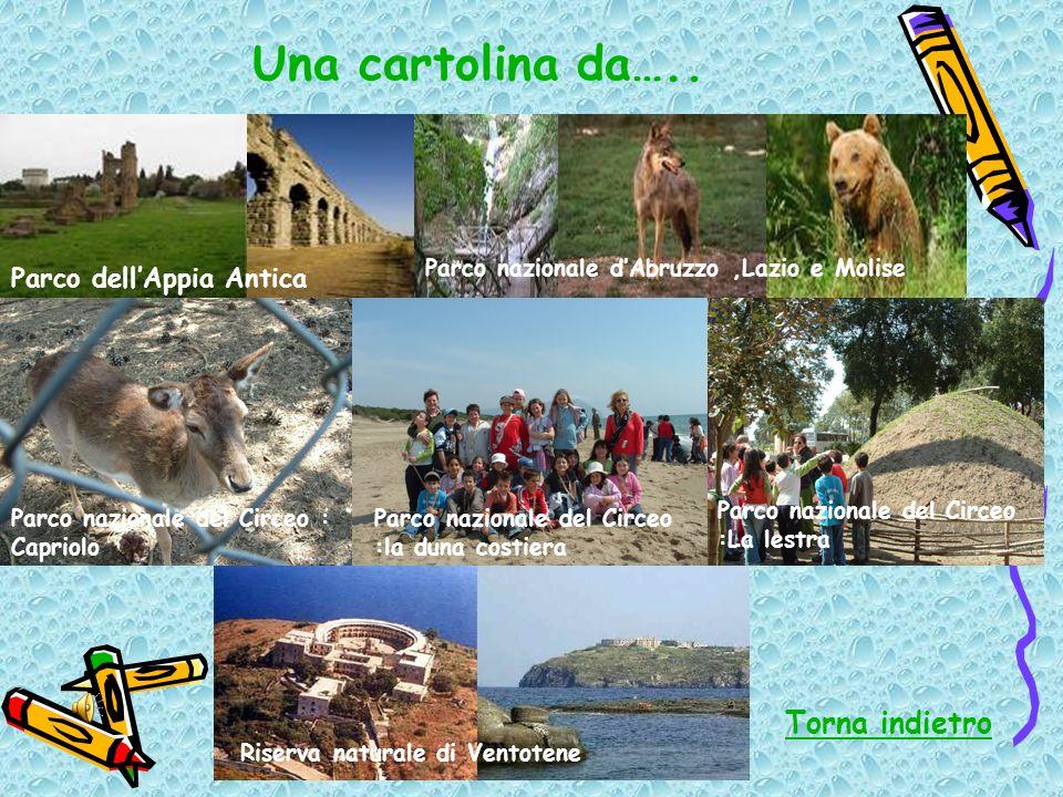 Una cartolina da….. Torna indietro Parco dell'Appia Antica
