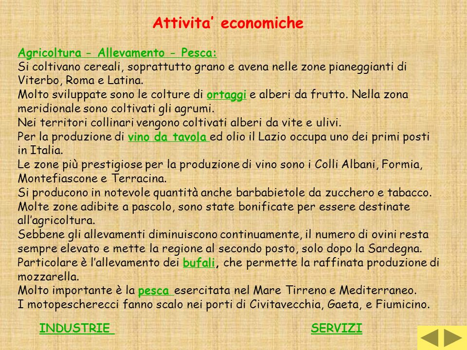 Attivita' economiche