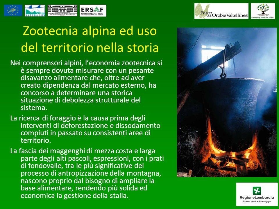 Zootecnia alpina ed uso del territorio nella storia