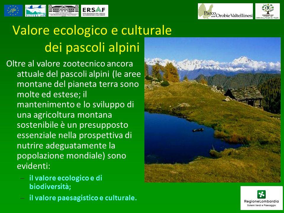 Valore ecologico e culturale dei pascoli alpini