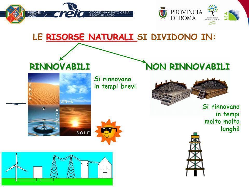 LE RISORSE NATURALI SI DIVIDONO IN: