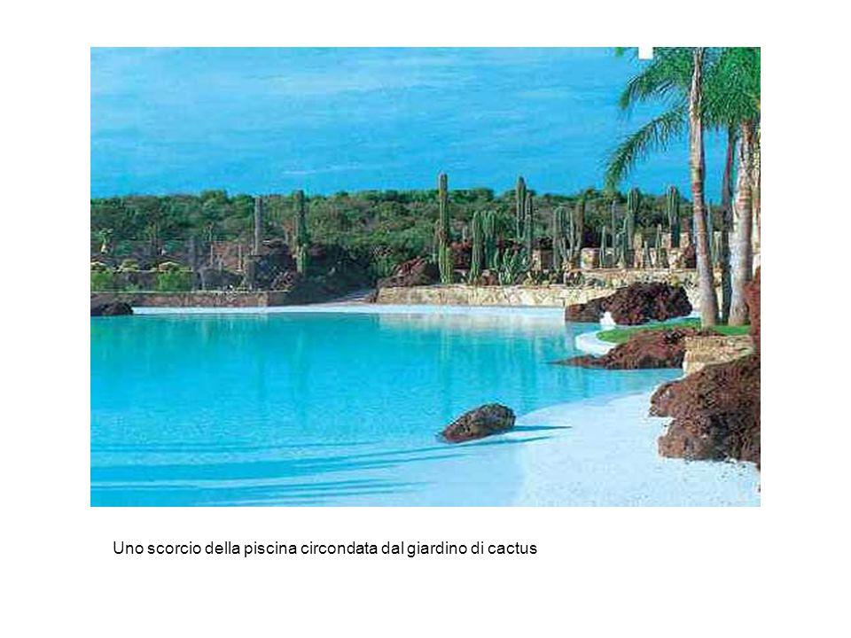 Uno scorcio della piscina circondata dal giardino di cactus