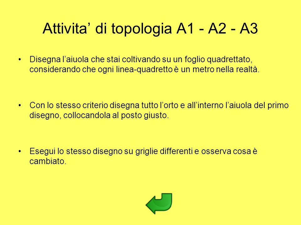 Attivita' di topologia A1 - A2 - A3