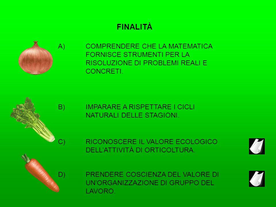 FINALITÀ A) COMPRENDERE CHE LA MATEMATICA FORNISCE STRUMENTI PER LA RISOLUZIONE DI PROBLEMI REALI E CONCRETI.
