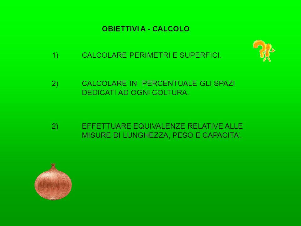 OBIETTIVI A - CALCOLO 1) CALCOLARE PERIMETRI E SUPERFICI. 2) CALCOLARE IN PERCENTUALE GLI SPAZI DEDICATI AD OGNI COLTURA.