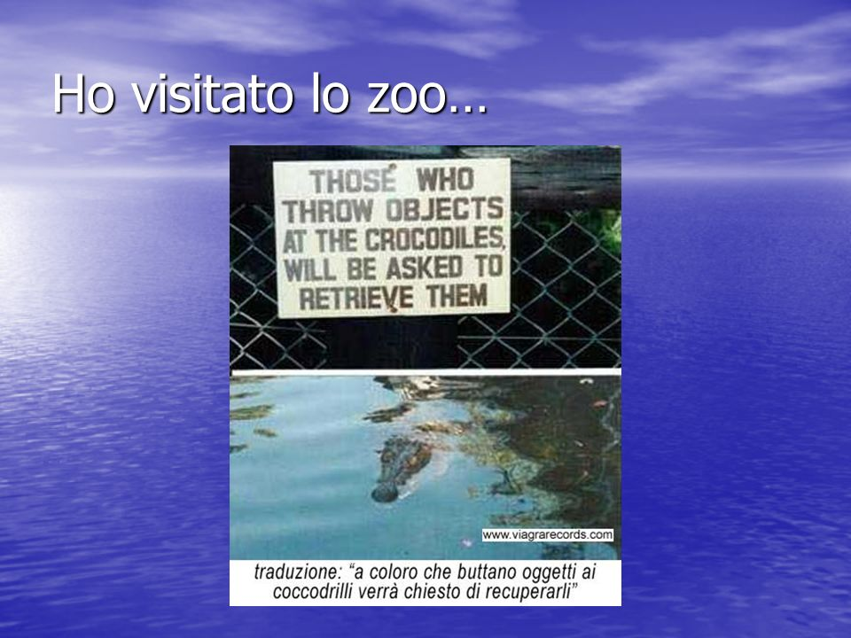Ho visitato lo zoo…
