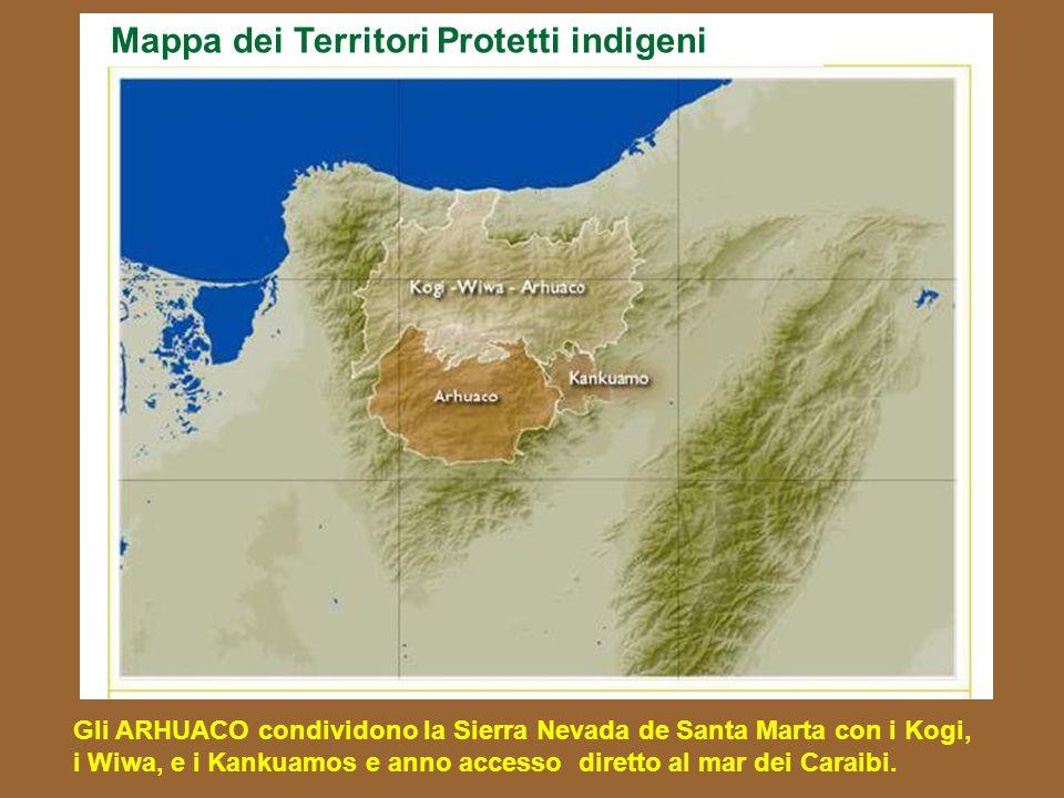 Mappa dei Territori Protetti indigeni