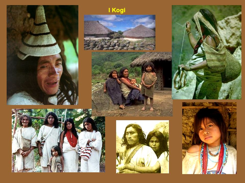 I Kogi