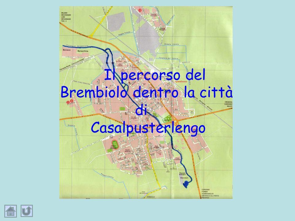 Il percorso del Brembiolo dentro la città di Casalpusterlengo