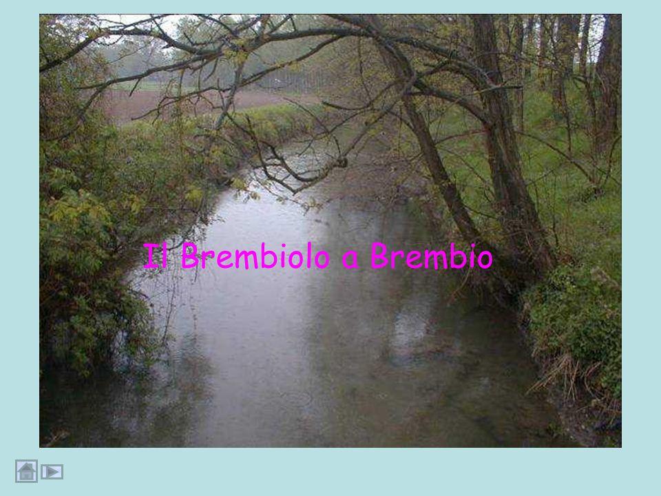 Il Brembiolo a Brembio Dia41:fotobrembio