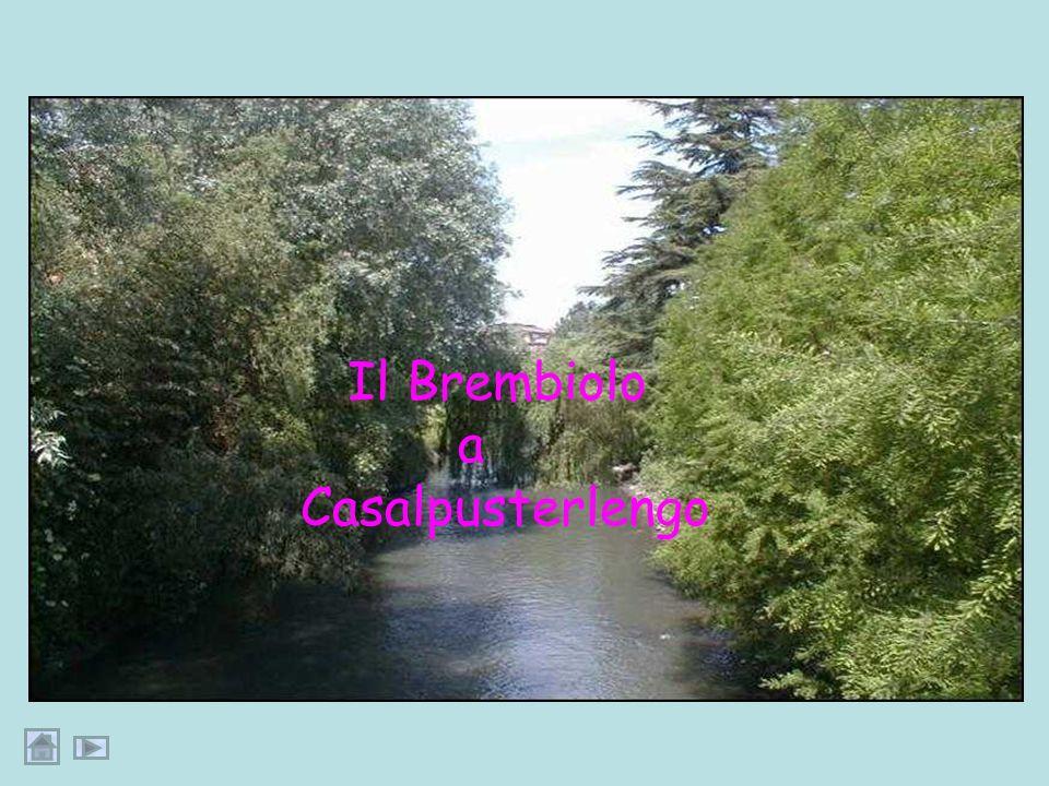 Il Brembiolo a Casalpusterlengo Dia44:fotoCasale
