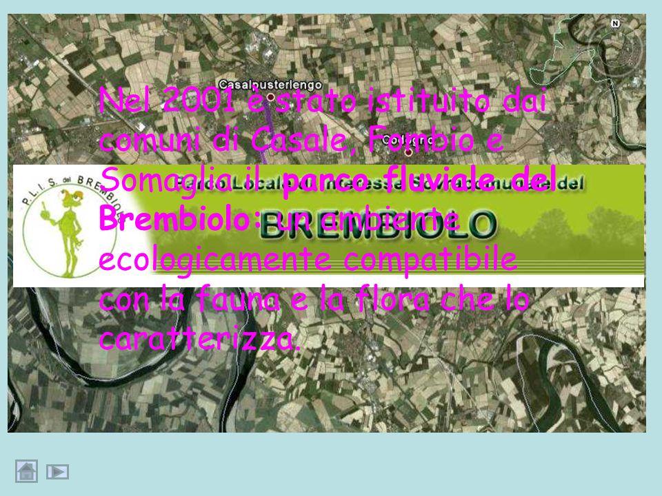 Nel 2001 è stato istituito dai comuni di Casale, Fombio e Somaglia il parco fluviale del Brembiolo: un ambiente ecologicamente compatibile con la fauna e la flora che lo caratterizza.
